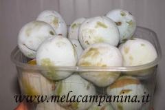 Frutto molto antico coltivato nell'Az.Agr.Paolo Franzoni,il suo sapore molto buono ne stà portando alla riscoperta