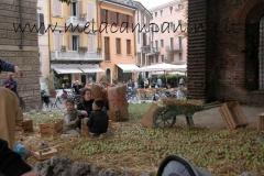 Mela campanina a Mantova