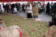 suggestiva immagine panoramica dell'esposizione annuale che si svolge presso il mercato contadino di Mantova
